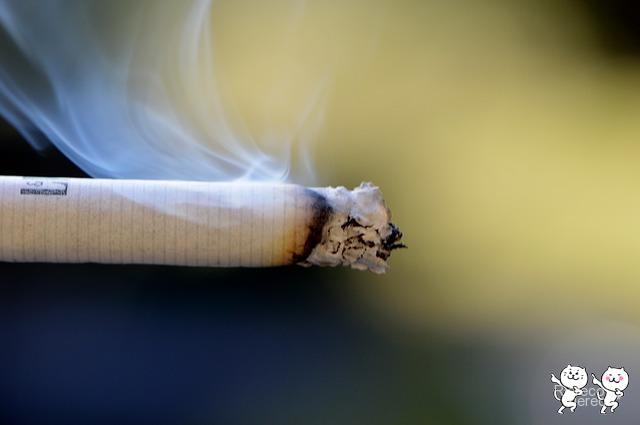 cigarette-666941_640