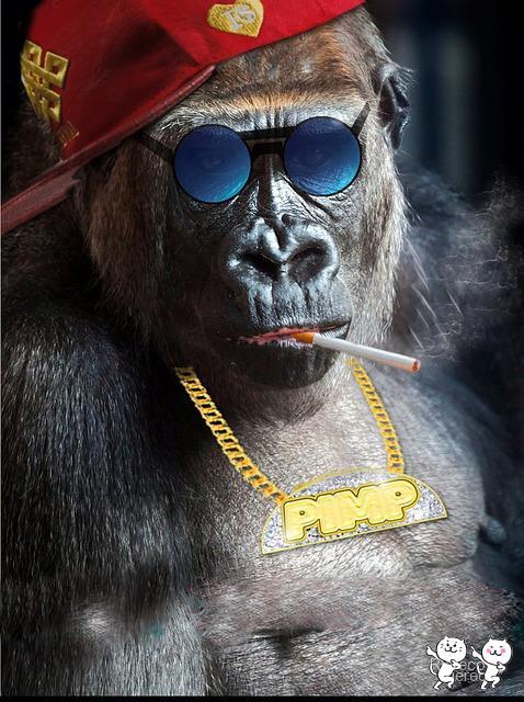 monkey-853719_640